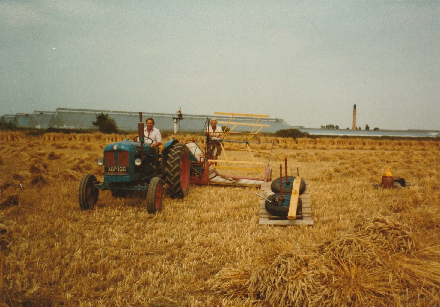 Cutting of thatching straw at Barnham, West Sussex