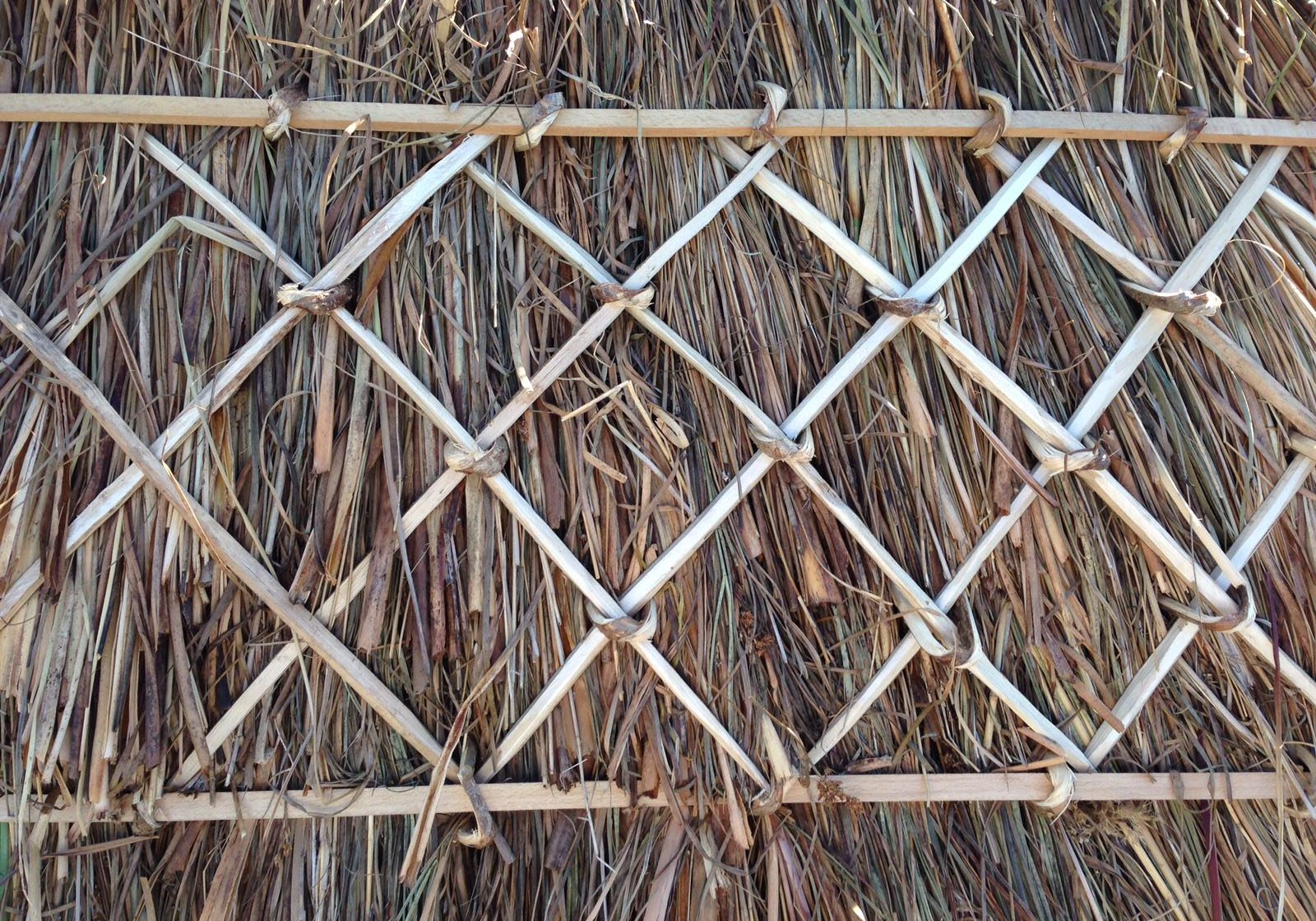 complete rethatch in water reed